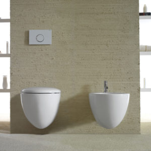 Bowl + Wall Hung Toilet