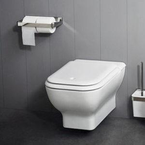 Memory Wall Hung Toilet
